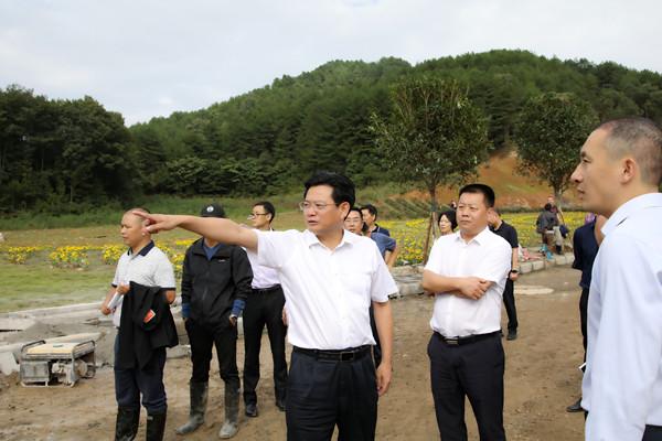蔡邦银调研第二届美丽中国田园博览会筹备情况