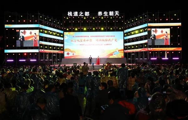 四川省文艺志愿者惠民巡演走进我区