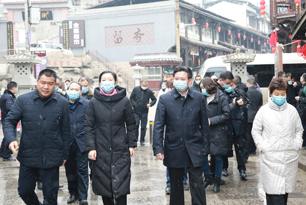 市委市政府调研第十一届(冬季)乡村文化旅游节筹备情况